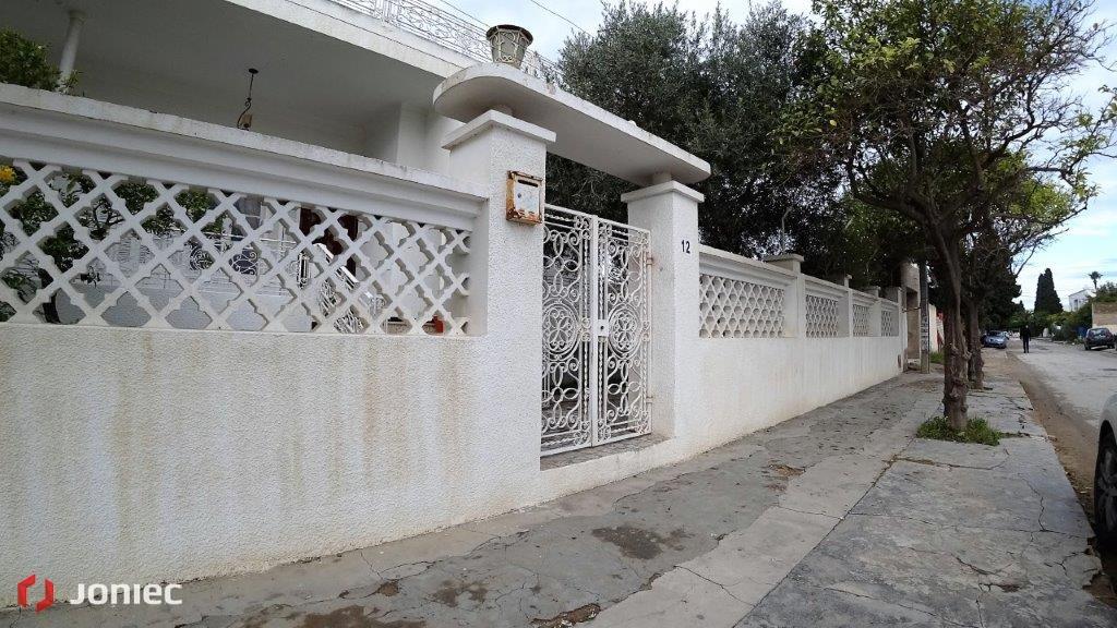 Ogrodzenia Tunezja (12)